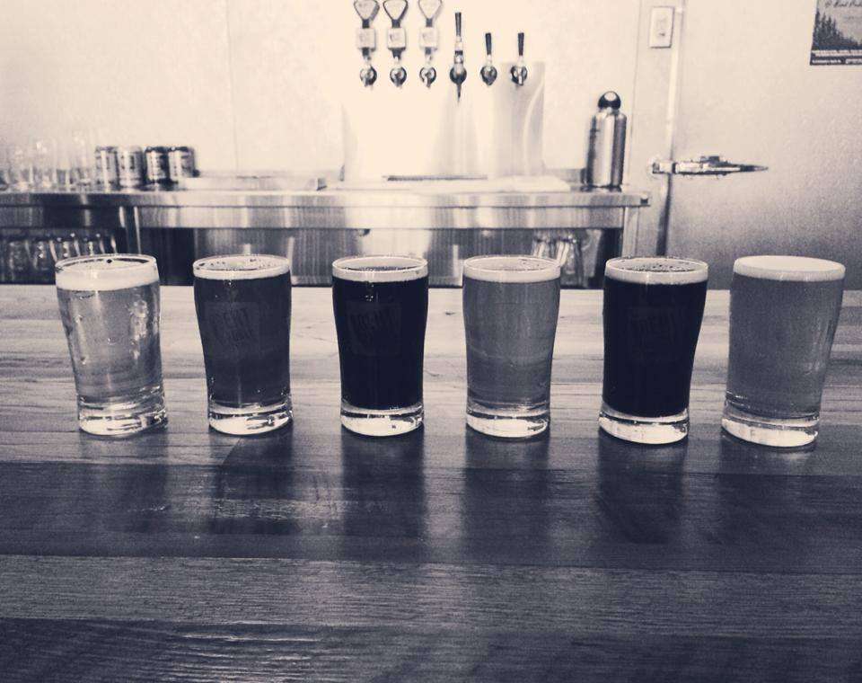 Craft Beer Bent Paddle Duluth Drink Local